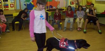 Iskolai foglalkozás a vakvezető kutyával