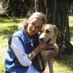 Egy parkban hölgy térdel és átöleli a zsemleszínű vakvezető kutyáját.