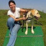 Egy kutyáknak készített rámpán ül egy fiatal hölgy. Mellette áll a zsemleszínű labrador vakvezető kutyája és elfele tekinget.