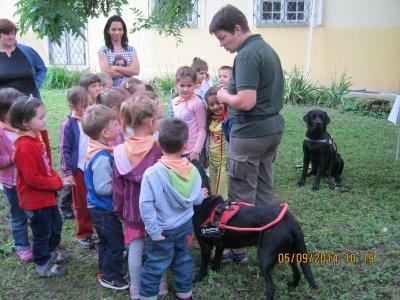 A lot of cute little children listening with interest the description Piroska present two beautiful black labradorguide dog