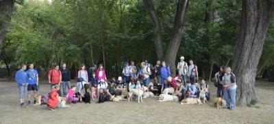 Guide dogs, trainers, blind people, volunteers and puppy trainers