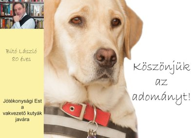 Donation thank-you card with Laszlo Bito and Borcsa the guide dog