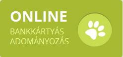 Online bankkártyás adományozás