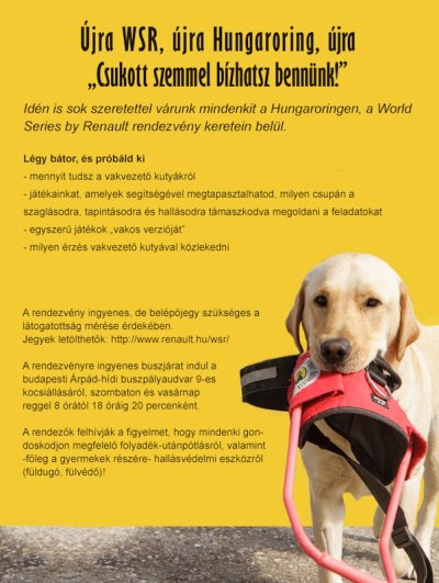 Text on the poster can you read below the image.  On the poster is to see a guide dog in his mouth holding the guide harness