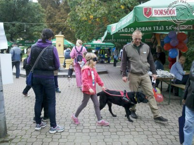A brave little girl trying out what it's like to trust with covered  eyes a guide dog