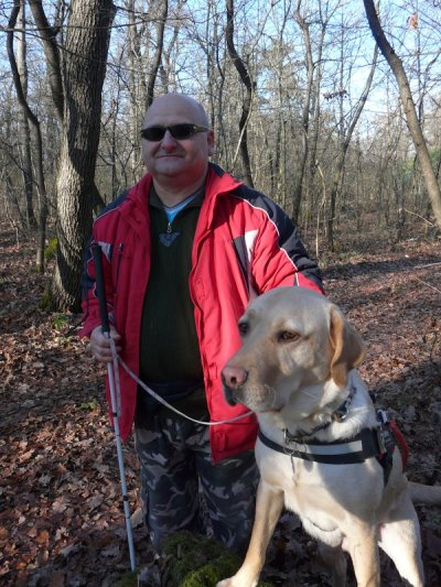 On the picture a visually impaired man is standing (he is Barna) in the woods. There is a white cane in his right hand. He is having his guide dog (Lokum) in his left hand, who is a yellow Labrador. The guide dog puts his front legs on a log.
