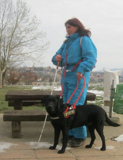 In the picture Kriszta is standing in front of a park bench, with a white cane in her right hand. With her left hand she is holding on to Ebu's harness