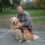Egy golden retreiver vakvezető kutya mellet guggol gazdája.