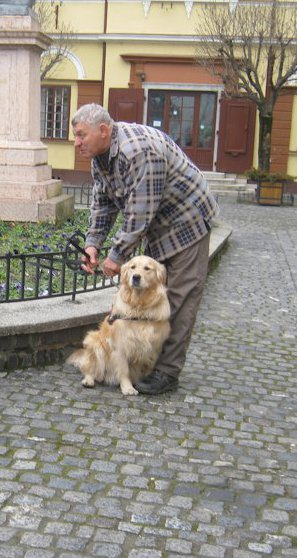 In the picture Istvan is bendig down and tying Oti, the golden retriever' s dog-lead. Oti is sitting at his legs.