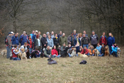 In the picture there is a hiking crew with dogs in the beautiful spring weather.