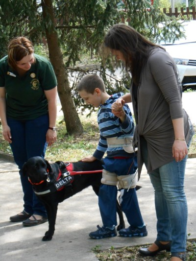 In the picture there is a black Labrador in harness. The trainer is standing on one side of the dog and a little boy on the other stroking the back of the dog. A woman is holding the other hand of the boy.