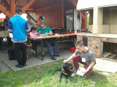 In the picture there is a boy at the front stroking Delta, the black Labrador, who is lying on the grass in harness. Behind them at a desk there is our colleague who is showing Braille to a little girl.