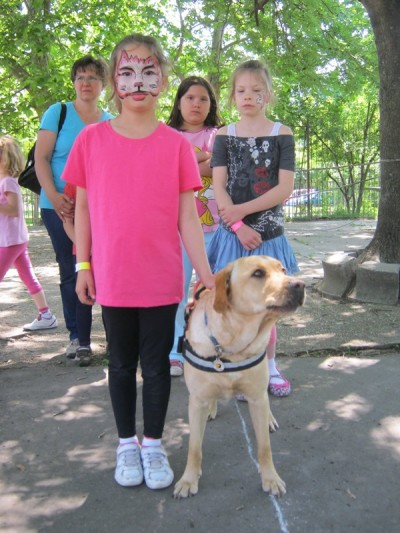 In the picture there is a little girl standing and holding the handle of  the harness of a yellow Labrador.