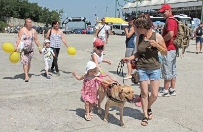 In the picture there is a yellow Labrador in harness leading a blindfolded little girl. There is another little girl holding the harness of the dog. In front of them the trainer is walking with the leash of the dog in her hand looking back at the girls.