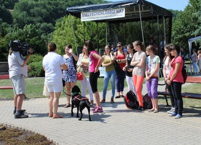 In the picture there is a group of people standing. In fron of them there is a lady facing the group. Beside her there is a black Labrador in harness.