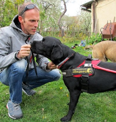 In the picture there is a middle-aged man squatting and is just giving treats to his black Labrador in harness.