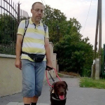 Egy férfi áll a járdán, úttesten való átkeléshez készülődve a vakvezető kutyájával.