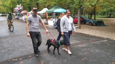 In the picture a blindfolded man is being guided by a black Labrador. One of our colleagues is holding her leash.