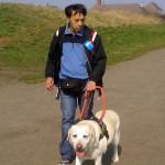Egy farmeres, melegítős vak férfit vezet a sárga vakvezető kutyája egy széles úton.