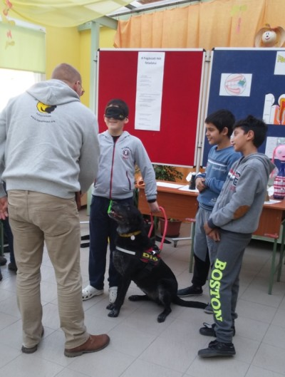 In the picture there is a blindfolded young boy who is just about to start out with a black guide dog holding his harness in his hand. The trainer of the dog is standing in front of the dog on the other side of whom there are two boys watching them.