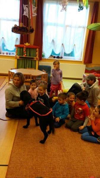 In the picture there are children sitting on the carpet. There is a black Labrador in harness standing next to children, whose leash is held by the trainer who is also sitting on the carpet.