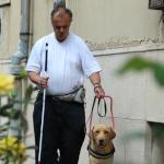 Egy látássérült férfi fehérbottal a lépcsőzött járdán halad zsemleszínű vakvezető kutyájával.