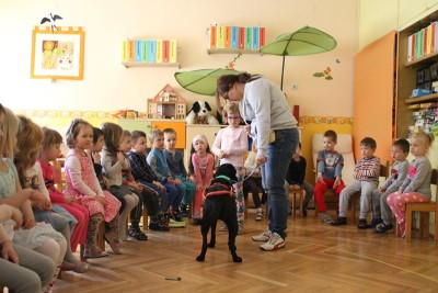 There is a group of children in the picture. A black Labrador i harness is standing in front of them watching a little girl in fron of him. Beside the Labrador there is a lady holding the dog's leash.