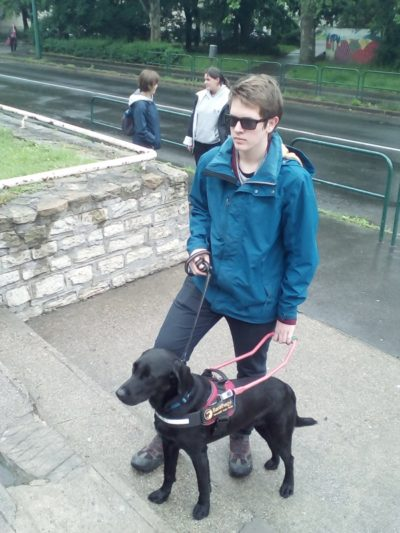 In the picture a guide dog, a black Labrador, is leading up the steps his young owner, Máté