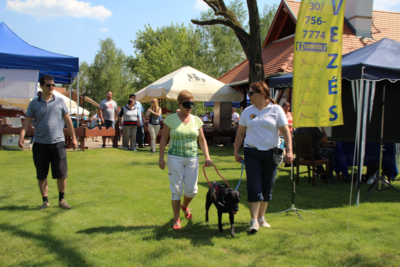 In the picture a lady is guided by a black Labrador, whose leash is held by our colleague.