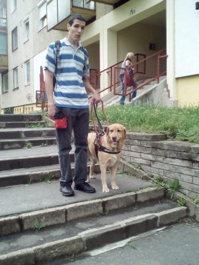 In the picture a young man is standing in the middle of the stairs with his guide dog.