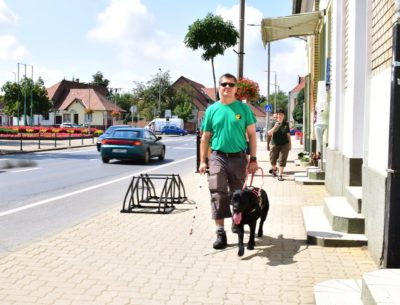 In the picture there is a visually impaired man walking on the street with his guide dog, a black Labrador.