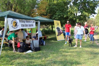 In the picture a man is trying out what it is like walking blindfolded led by a black Labrador guide dog. In another part of the picture people are sitting under a tent and playing different games.