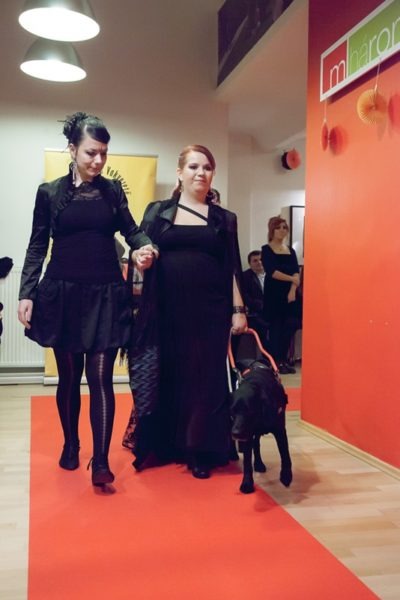 In the picture Dóri is walking on the red carpet while taking Brigi's arm and holding the harness of her guide dog.