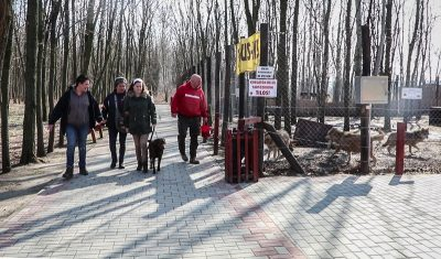In the picture Debora is walking in front of the wolves' yard with her guide dog. There are also 2 women and a man beside them.
