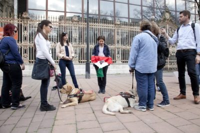 In the picture people are standing in a circle. Everyone is listening to a lady in the middle holding a Hungarian flag with a hole. The guide dogs are lyinf around their visually impaired owners.]