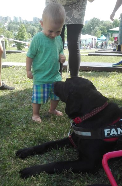 In the picture Fanni, a black Labrador is lying on the ground in guide dog's harness. A little boy is standing beside and smiling at him.