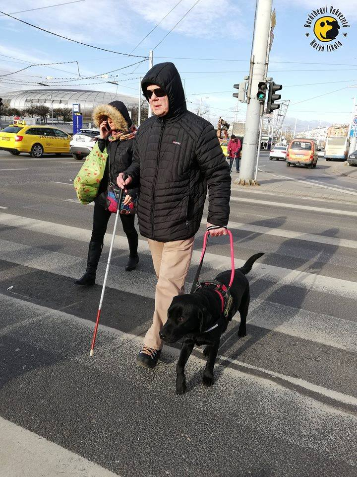Tamás and Ion crosses the street